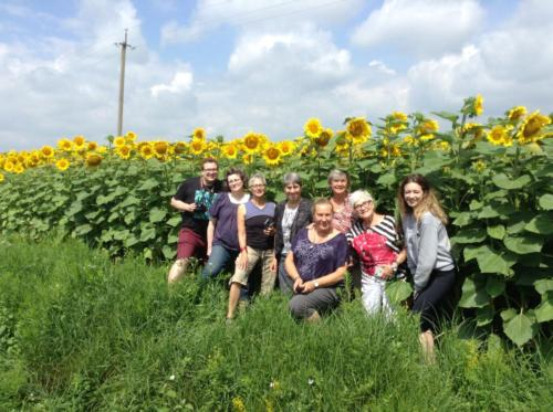 Pilgrims pose for a photo among a large field of sunflowers